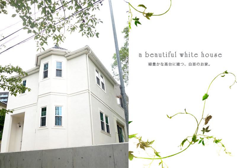 高台に建つ白亜のシャトー