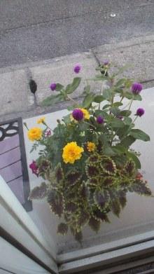 花を飾った